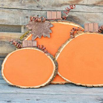 Sütőtök táblák - őszi kerti dekoráció farönk szeletekből