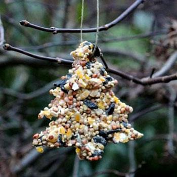 Madárkenyér házilag - kültéri karácsonyfadísz (téli madáretetés)