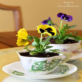 Virágok teáscsészében - kreatív ajándék újrahasznosítással