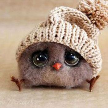 Aranyos kicsi madárka téli sapkával - tűnemezelés