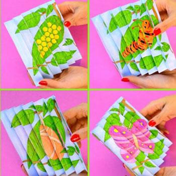 Nyomtatható színezhető lepke életciklus varázskép