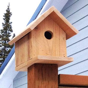 Egyszerű fa madárodú (ingyenes tervrajzzal) - barkácsolás