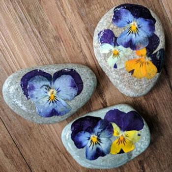 Kő nehezék préselt tavaszi virágokkal - tavaszi dekoráció