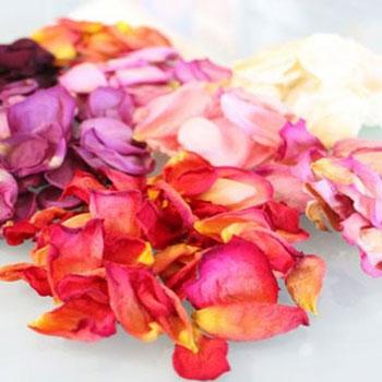 Virágszirmok és virágok szárítása egyszerűen