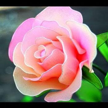 Harisnya virágok - rózsák harisnyanadrágból