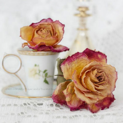 How to dry roses and flowers