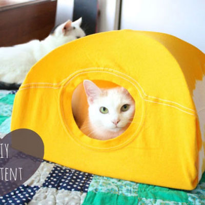 DIY cat tent from old T-shirt and wire hangers