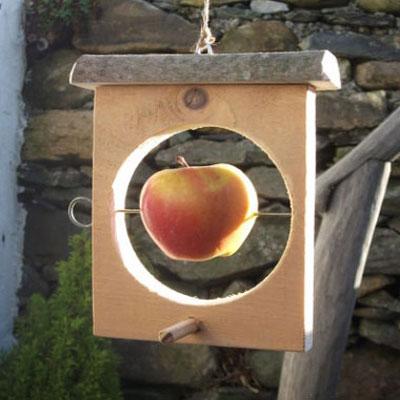DIY winter apple feeder for birds (woodworking)