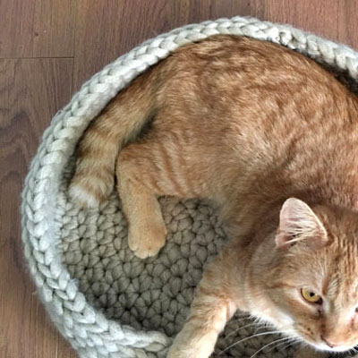 Easy cozy crochet cat bed (free crochet pattern)