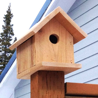 DIY Easy wooden birdhouse (free plan)