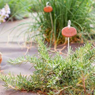 Easy DIY Clay garden markers - garden decoration
