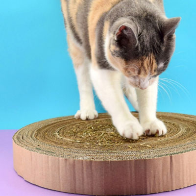DIY Cardboard cat scratcher - cardboard upcycling craft