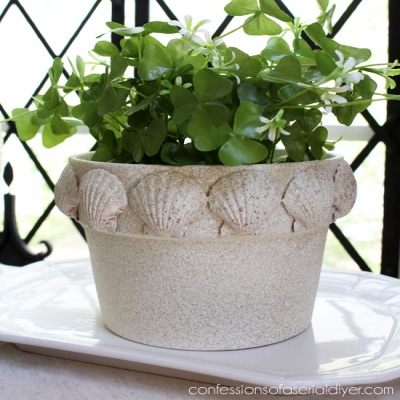 DIY Seashell terracotta pot - seashell planter with faux stone spray paint