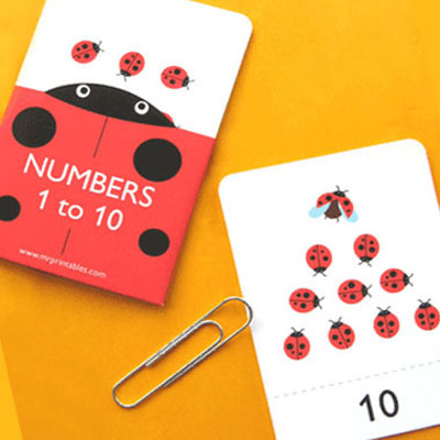 Ladybug number flash cards (1-10)