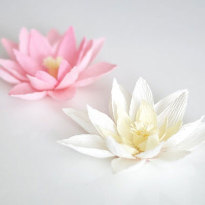 Crepe paper water lily