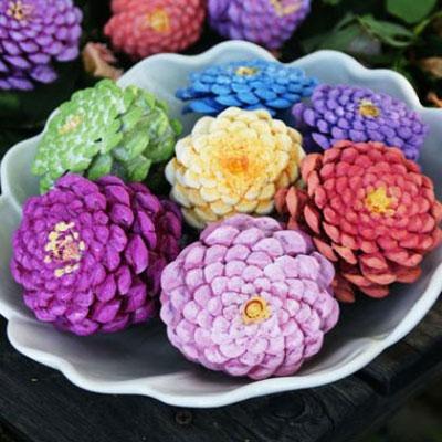 Zinnia flowers from pinecones