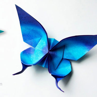 Origami swallowtail butterfly ( paper folding )