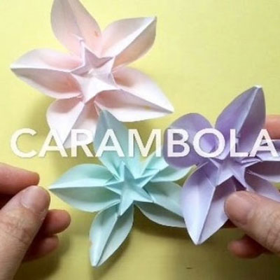 Origami carambola (or spring flower) - paper folding