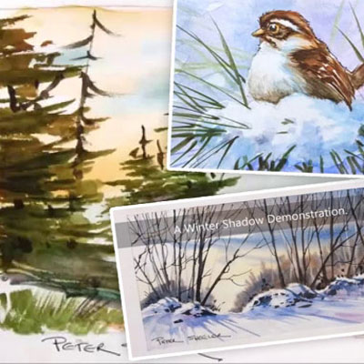 How to paint landscapes,birds and seasons with Peter Sheeler